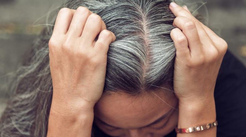 canas o pelo gris