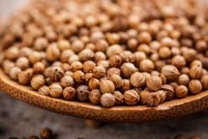 beneficios de las semillas de cilantro